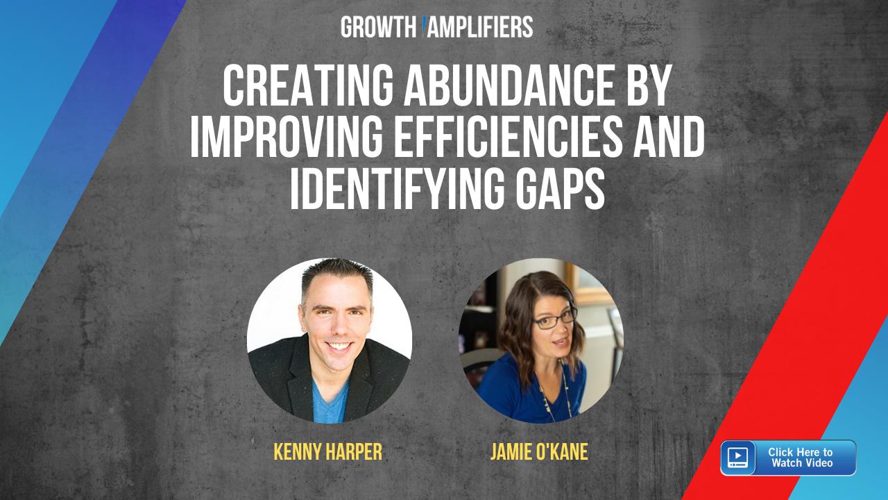 Creating Abundance by Improving Efficiencies and Identifying Gaps